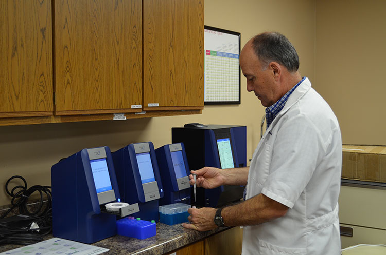 One of the veterinarians performing a test in the lab